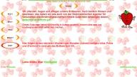 ErdbeerFeldVillHP10